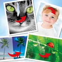 digitale Bildbearbeitung.jpg